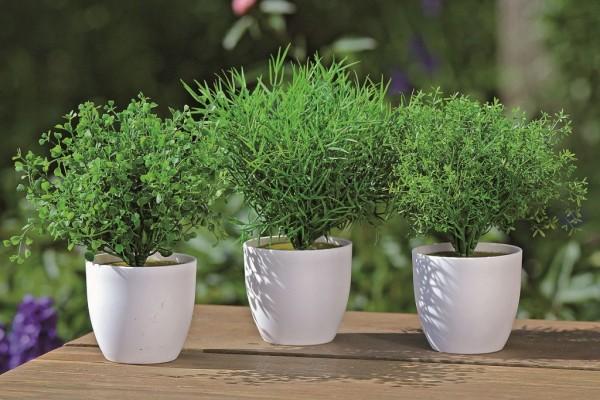 Pflanze im Topf 3er sortiert Kunststoff grün H25cm